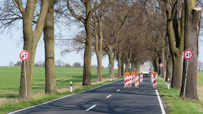 Baustelle, Fahrbahn, Tempo 80 Lkw, Schilder