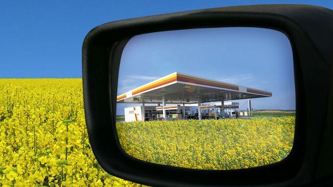 Gute Perspektiven fŸr Biodiesel