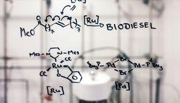 Biosprit für saubere Diesel